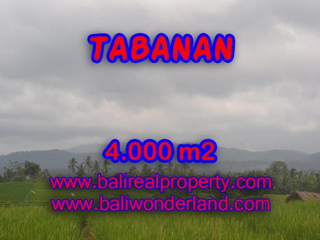LAND FOR SALE IN TABANAN, Wonderful view in TABANAN BARAT Bali – TJTB084