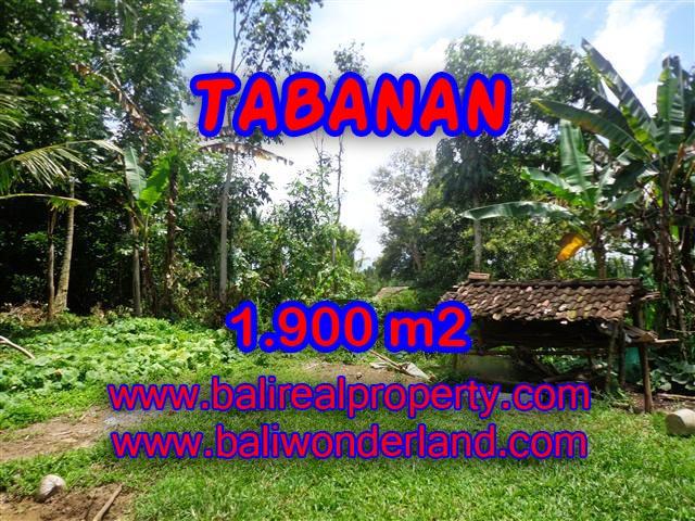 Land in Bali for sale, Stunning view in Tabanan Bali – TJTB091