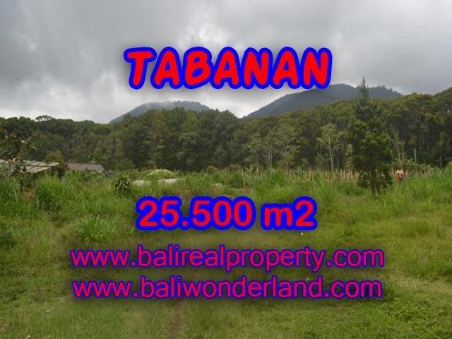 Land for sale in Bali, exotic view in Bedugul Tabanan Bali – TJTB085