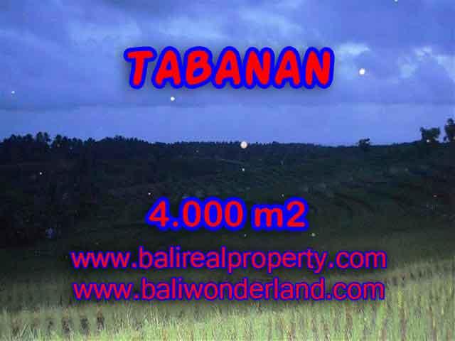 Land in Bali for sale, great view in Tabanan Bali – TJTB096