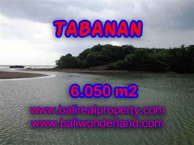 Beautiful Land for sale in Bali, rice fields, beach, and river view in Tabanan Bali – TJTB098