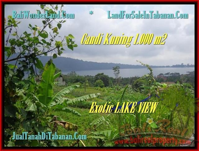 FOR SALE Magnificent PROPERTY LAND IN Tabanan Bedugul BALI TJTB179