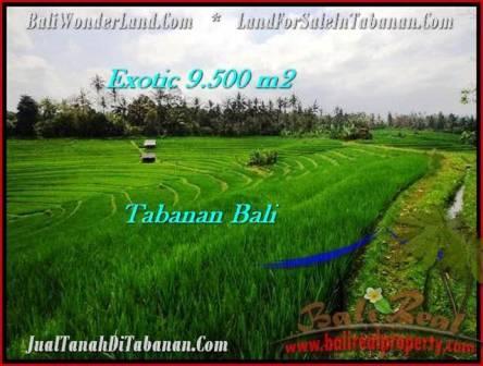 Affordable LAND FOR SALE IN Tabanan Selemadeg BALI TJTB210
