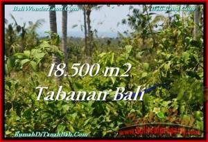 Exotic Tabanan Selemadeg BALI LAND FOR SALE TJTB232