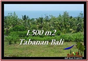 Magnificent LAND SALE IN Tabanan Selemadeg BALI TJTB234