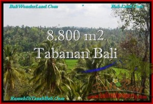 FOR SALE Magnificent PROPERTY 8,800 m2 LAND IN TABANAN BALI TJTB238