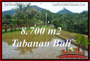 Exotic LAND SALE IN Tabanan Penebel BALI TJTB316