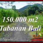 Beautiful 150,000 m2 LAND IN Tabanan Penebel FOR SALE TJTB318
