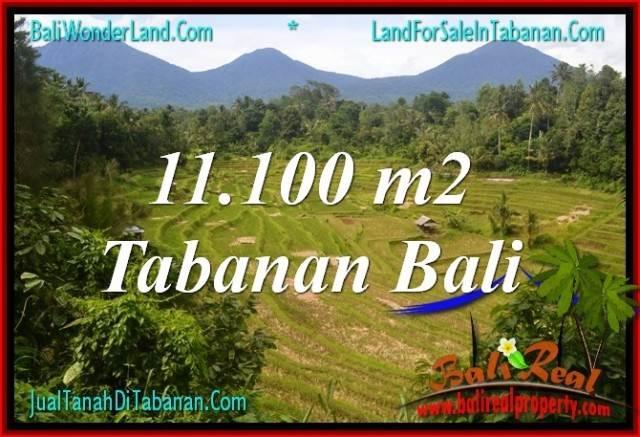 Beautiful 11,100 m2 LAND FOR SALE IN Tabanan Penebel BALI TJTB320
