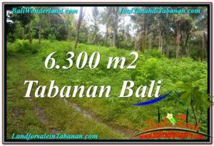 Exotic PROPERTY LAND IN TABANAN BALI FOR SALE TJTB313
