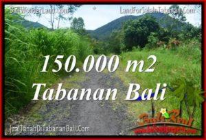 Beautiful 150,000 m2 LAND SALE IN Tabanan Penebel TJTB318