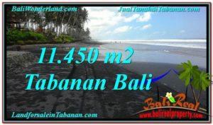 Magnificent PROPERTY 11,450 m2 LAND IN Tabanan Kerambitan FOR SALE TJTB291