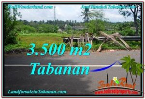 Beautiful 3,500 m2 LAND SALE IN TABANAN BALI TJTB298