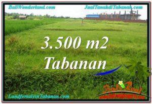 Beautiful PROPERTY Tabanan Kerambitan 3,500 m2 LAND FOR SALE TJTB302