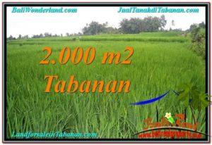 Tabanan Penebel BALI LAND FOR SALE TJTB303