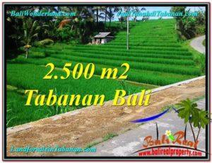 FOR SALE Exotic LAND IN Tabanan Penebel BALI TJTB305