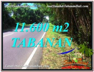 Exotic PROPERTY 11,600 m2 LAND FOR SALE IN TABANAN TJTB327