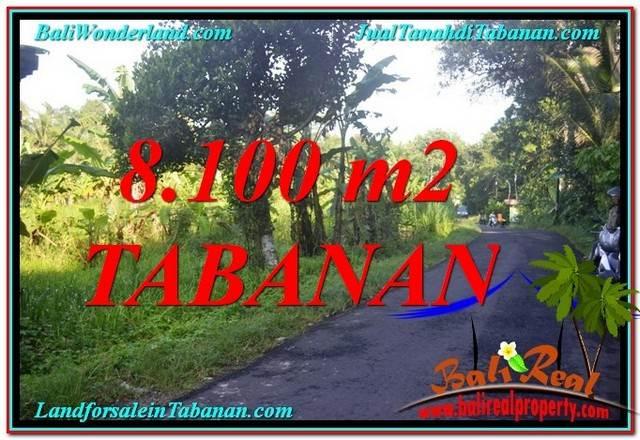 Magnificent Tabanan Marga LAND FOR SALE TJTB329