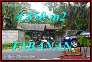 Beautiful PROPERTY 4,850 m2 LAND IN Tabanan Bedugul BALI FOR SALE TJTB330