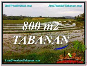 Affordable 800 m2 LAND FOR SALE IN TABANAN TJTB324