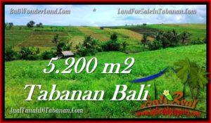 Exotic PROPERTY LAND SALE IN TABANAN TJTB281