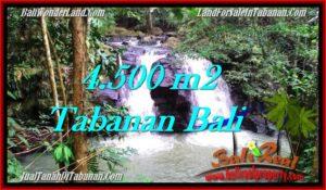 Beautiful PROPERTY TABANAN LAND FOR SALE TJTB283