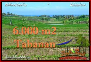 Beautiful LAND IN TABANAN FOR SALE TJTB268