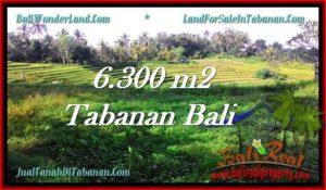 Beautiful PROPERTY LAND IN TABANAN FOR SALE TJTB275