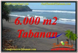 Magnificent LAND SALE IN TABANAN TJTB345