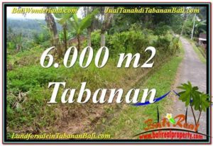 Magnificent PROPERTY LAND IN Tabanan Selemadeg BALI FOR SALE TJTB349