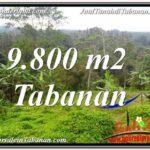 Magnificent LAND SALE IN TABANAN TJTB350