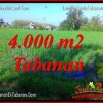 FOR SALE Exotic LAND IN TABANAN BALI TJTB352