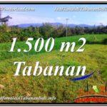 Magnificent PROPERTY 1,500 m2 LAND SALE IN Tabanan Selemadeg TJTB353