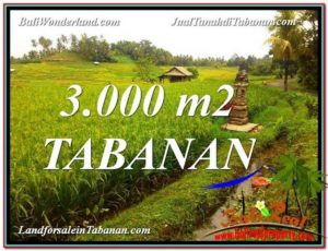 Magnificent PROPERTY LAND IN TABANAN BALI FOR SALE TJTB328