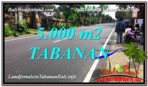 Affordable 5,000 m2 LAND SALE IN Badung BALI TJTB332