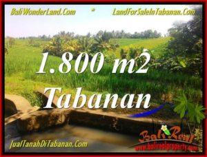 Affordable PROPERTY 1,800 m2 LAND IN Tabanan Selemadeg FOR SALE TJTB338