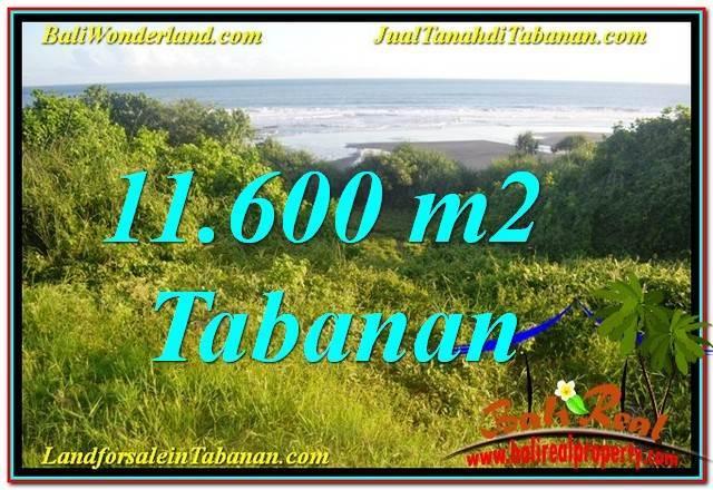 Exotic TABANAN LAND FOR SALE TJTB340