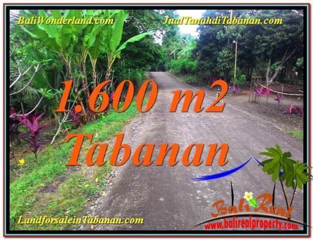Tabanan Selemadeg BALI 1600 M2 LAND FOR SALE TJTB337