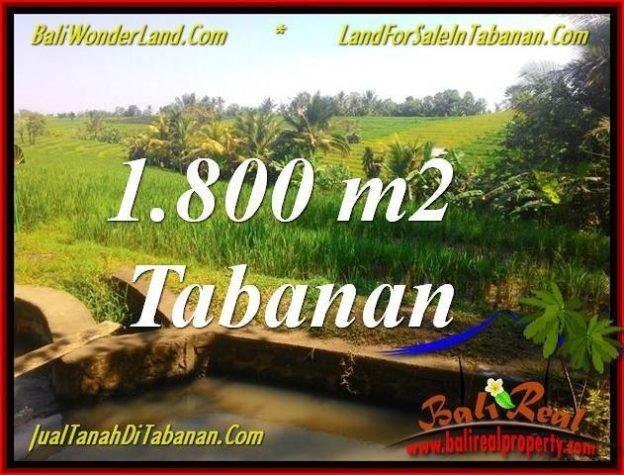 1800 M2 LAND SALE IN TABANAN BALI TJTB338