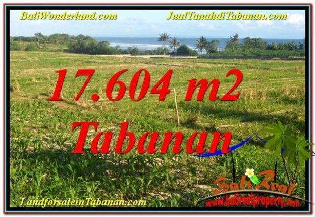 Affordable 17604 M2 LAND SALE IN Tabanan Kerambitan BALI TJTB342