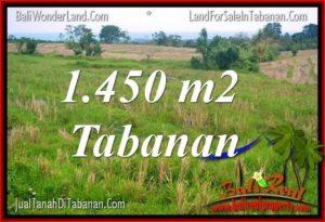 FOR SALE Affordable 1,450 m2 LAND IN TABANAN BALI TJTB343