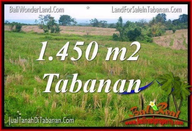 FOR SALE Affordable 1450 M2 LAND IN TABANAN BALI TJTB343