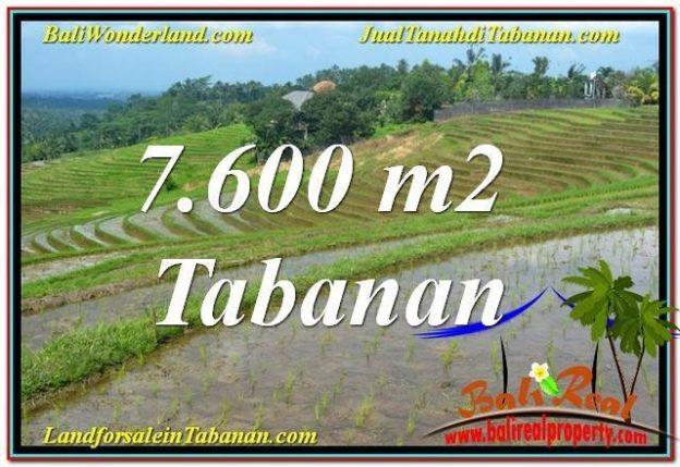 Affordable 7600 M2 LAND SALE IN Tabanan Selemadeg BALI TJTB347