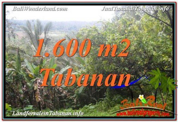 FOR SALE Affordable 1600 M2 LAND IN TABANAN BALI TJTB348