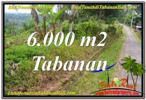 Exotic LAND SALE IN Tabanan Selemadeg TJTB349