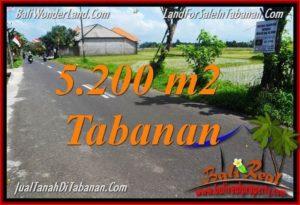 JUAL TANAH di TABANAN BALI Untuk INVESTASI TJTB351