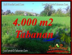 Exotic PROPERTY TABANAN 4,000 m2 LAND FOR SALE TJTB352
