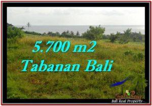 Affordable PROPERTY 5,700 m2 LAND IN Tabanan Selemadeg FOR SALE TJTB250