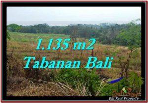 FOR SALE Beautiful PROPERTY 1,135 m2 LAND IN Tabanan Selemadeg TJTB253