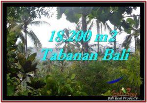 FOR SALE LAND IN Tabanan Selemadeg BALI TJTB254